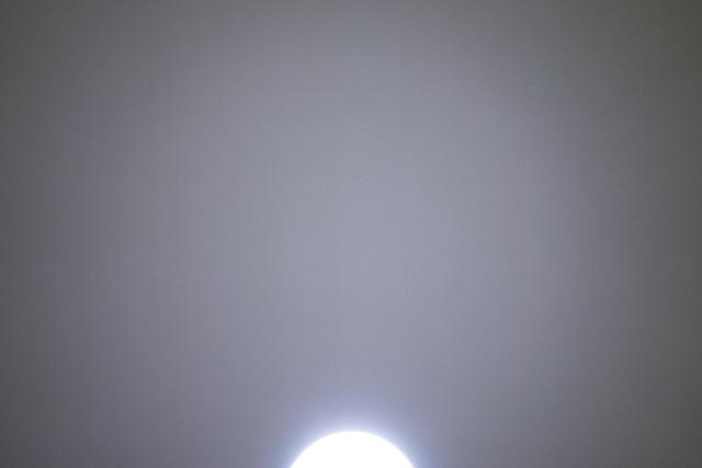 DSC00188-1.jpg