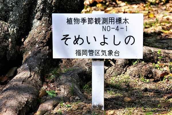 福岡管区気象台