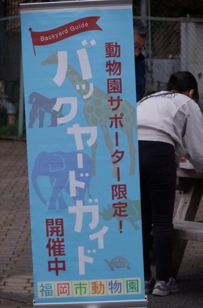 福岡市動物園 サポーターだけ参加できるガイド