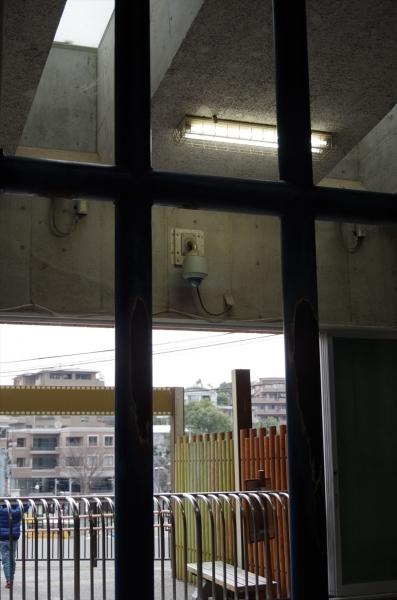 福岡市動物園 象舎内