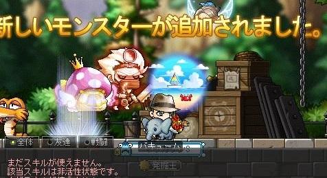 Maple15898a.jpg