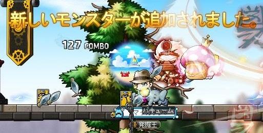 Maple15900a.jpg
