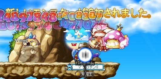 Maple15907a.jpg