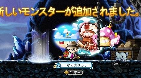 Maple15911a.jpg