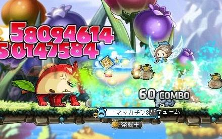 Maple15989a.jpg