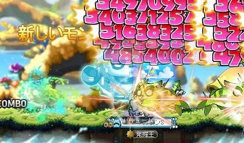 Maple16074a.jpg