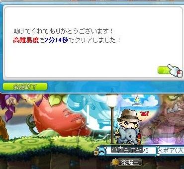 Maple16107a.jpg