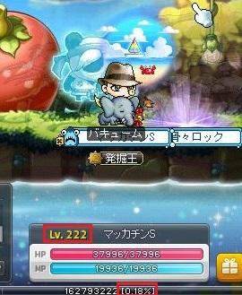 Maple16123a.jpg