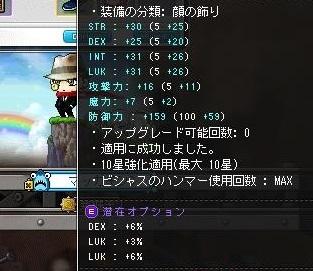 Maple16139a.jpg