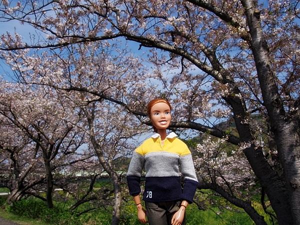 nakagawa-20170416-02s.jpg