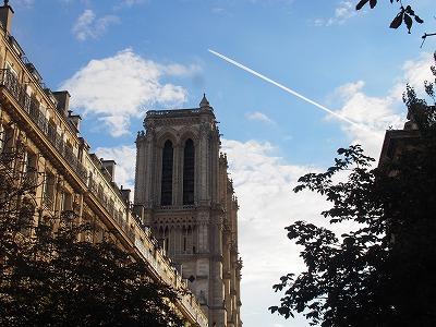 Cathedrale-Notre-Dame-de-Paris11.jpg