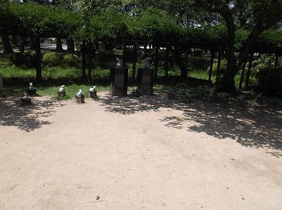 shimane59.jpg
