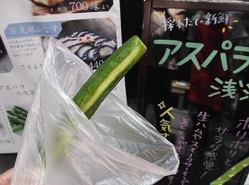shimane82.jpg