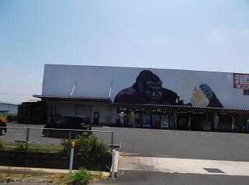 shimane84.jpg