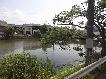 shimane93.jpg