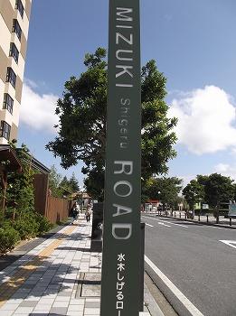 tottori81.jpg