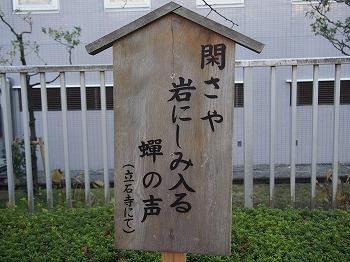 yamagata54.jpg