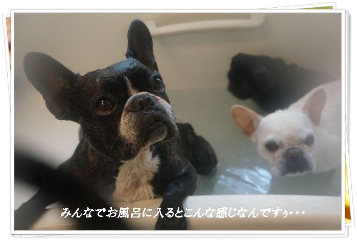 お風呂に入ると