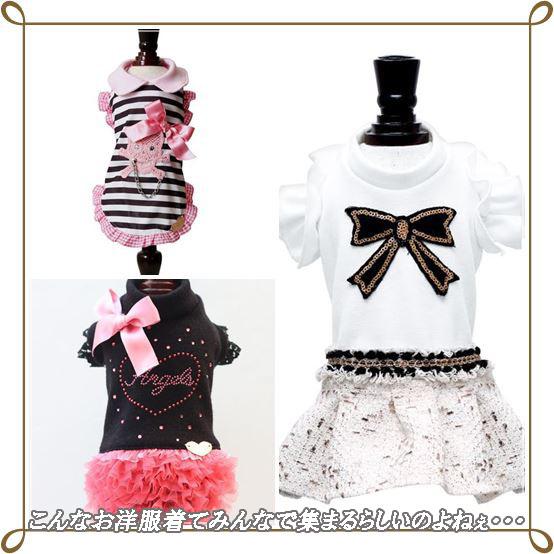 cats春ファッション