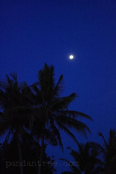 バリ島の満月