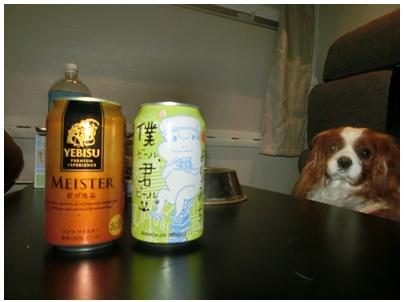 乾杯ビール1