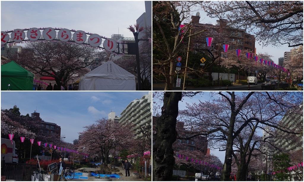2017-04-02.jpg