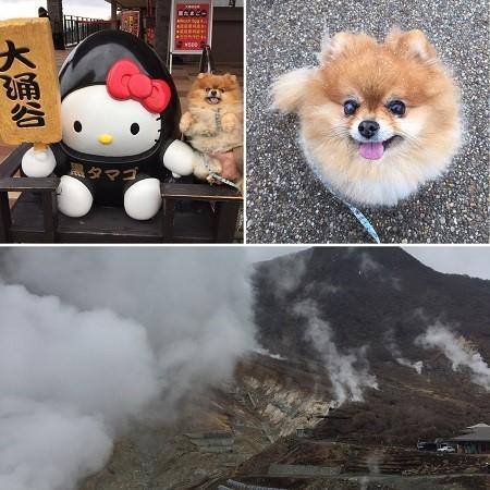 ブログ旅行-11