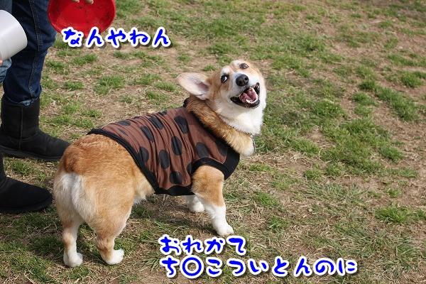 IMG_0606-2.jpg