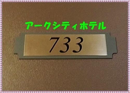 CIMG0065z.jpg