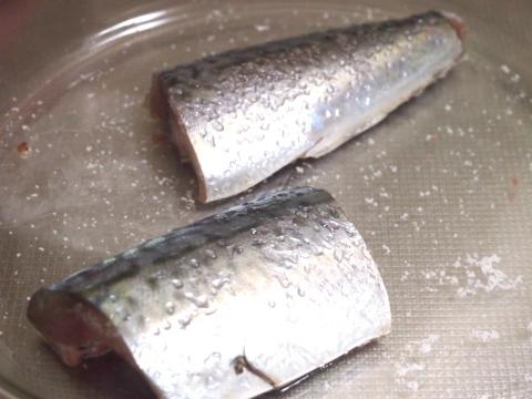 170220-12fish.jpg