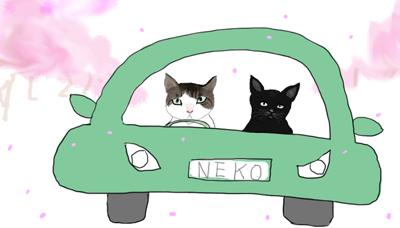 猫のドライブ400