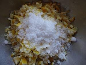 塩レモン4