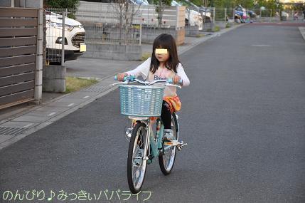 bicycle11.jpg