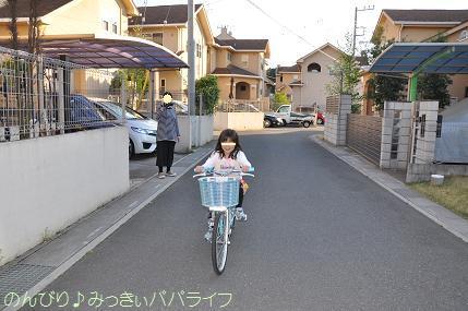 bicycle12.jpg