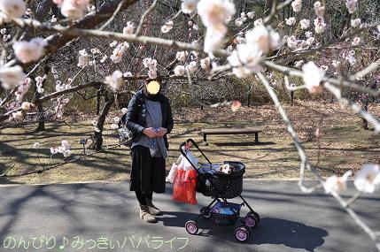 shinrinkoenbairin201709.jpg