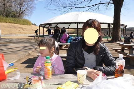 shinrinkoenbairin201727.jpg