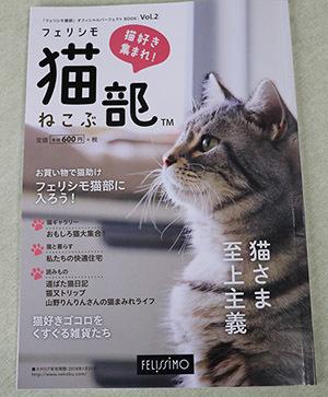 IMG_0149猫部