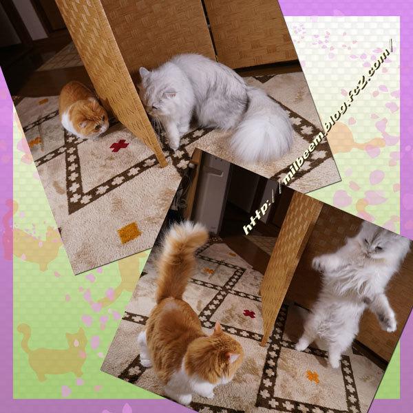 iisutaaOyatuDeco013.jpg