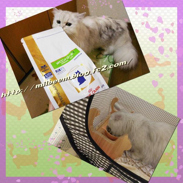 ryouyouRay002.jpg
