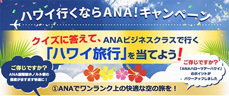 ANAは、ANAビジネスクラスで行くハワイ旅行が当たる「ハワイ行くならANA!キャンペーン」を開催!