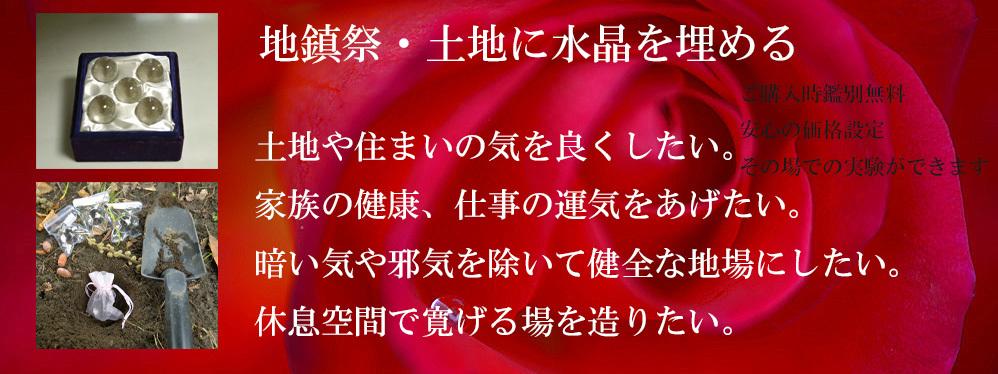 _DSC1131-11-1000-3.jpg