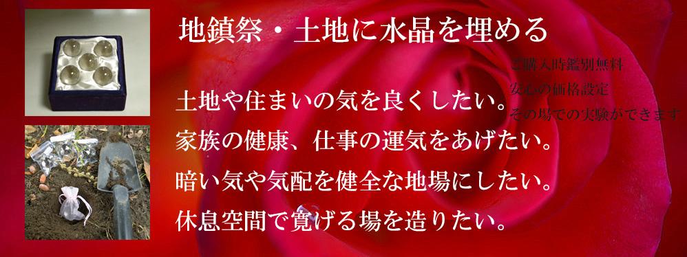 _DSC1131-11-1000-4.jpg