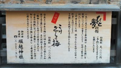 堀越01書き