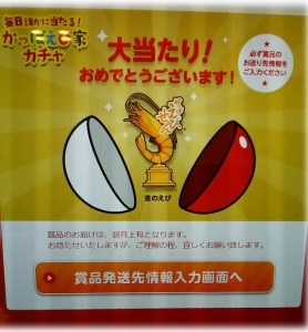 kapaebiyagacha.jpg