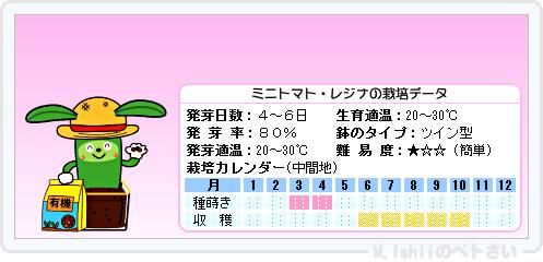 ペトさい(レジナ)07