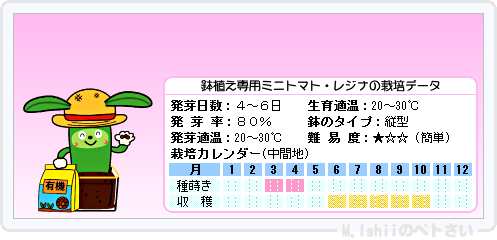 ペトさい(レジナ・改)18