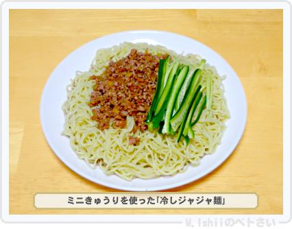 ペトさい(ミニきゅうり)51