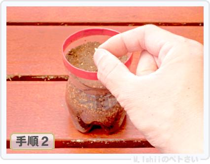 ペトさい(ベランダきゅうり)06
