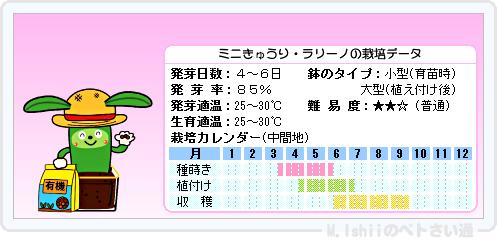 ペトさい(ミニきゅうり・改)16