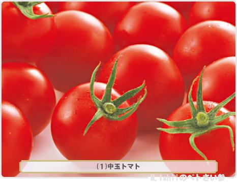 野菜投票2017_01候補01